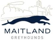 Free entry at Maitland dogs